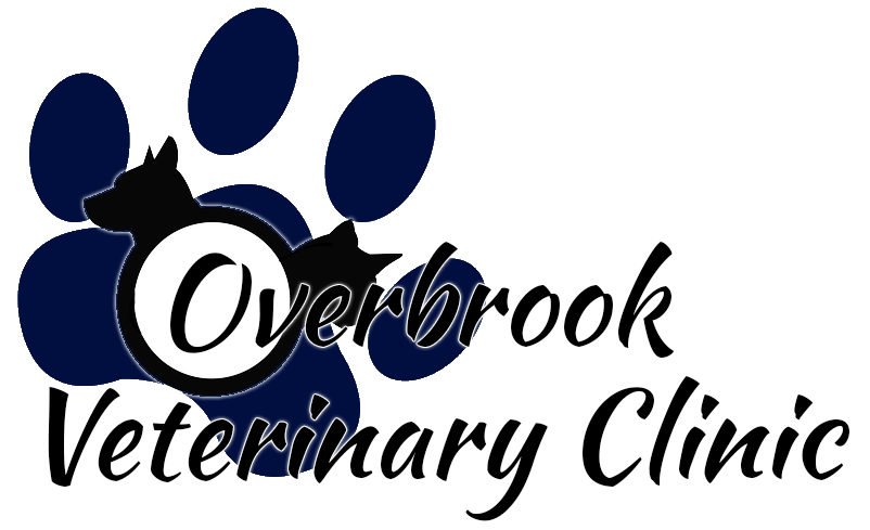 Overbrook Veterinary Clinic